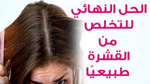 تعرف على العلاج الأفضل والوصفات الطبيعية للقضاء على قشرة الشعر