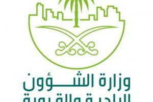 رابط التقديم على وظائف وزارة الشؤون البلدية والقروية