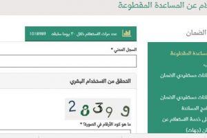والفئات المستفيدة من معاشات الضمان والمساعدات المقطوعة 1440 والضمان الاجتماعي بالسعودية