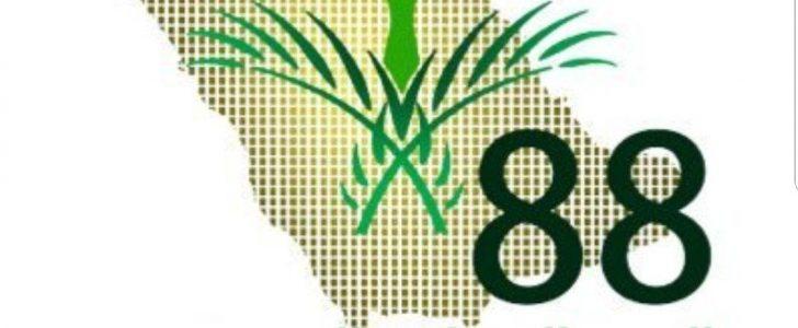 السعودية تحتفل باليوم الوطني السعودي 88 ونبذة تاريخية عنه