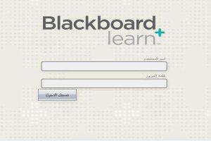 خطوات الدخول والتسجيل التفصيلية في بلاك بورد الكلية التقنية