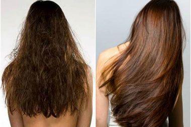 أهم وأفضل 5 وصفات طبيعية لكثافة الشعر الخفيف