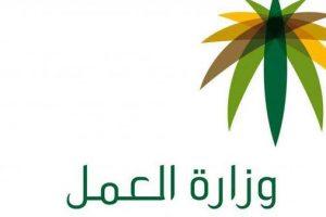 رخصة عمل الوافدين ورسوم التجديد لرخصة العمل للمقيمين والوافدين إلى المملكة