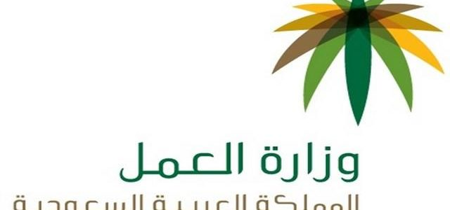 تعرف على رسوم المرافقين في المملكة العربية السعودية