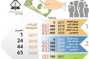 المديرية العامة للجوازات تعلن عن رسوم المرافقين في المملكة العربية السعودية 2018