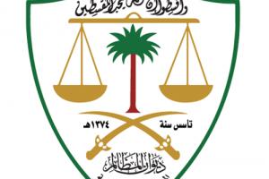 خطوات تقديم دعوى نظام معين ديوان المظالم لتيسير الخدمات القضائية وسرعة الاجراءات