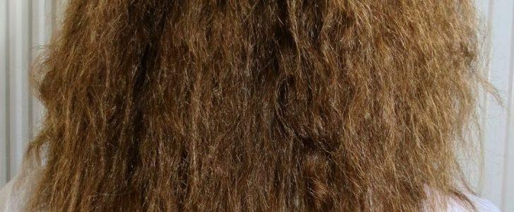 وصفات وخلطات سهلة وسريعة لتنعيم الشعر الجاف