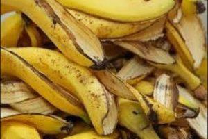 تعرفي على أهم فوائد قشر الموز للشعر