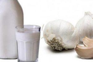 تعرفى على فوائد تناول الثوم مع اللبن يومياً