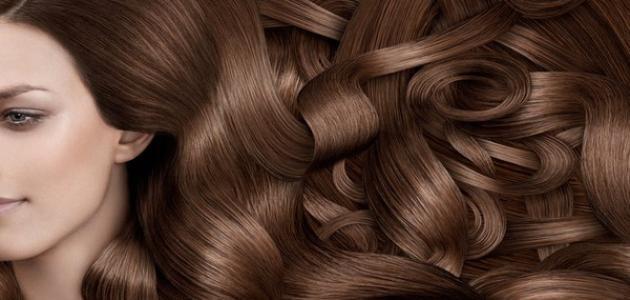 اهم الخلطات الطبيعية التي تساعد في تكثيف الشعر