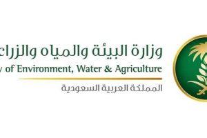 بالخطوات طريقة الاستعلام عن فاتورة المياه السعودية روابط الاستعلام وتحديث البيانات