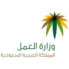 وزارة العمل توضح حقيقة توطين مهنة مندوب المبيعات وإيقاف إصدار التأشيرات لها