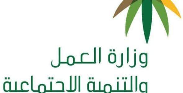 موعد إيداع الدفعة الجديدة من مساعدات الضمان الاجتماعي وزارة العمل والتنمية الاجتماعية