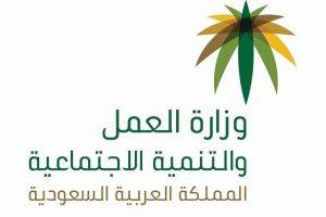 وزارة العمل تعلن عن خدمة جديدة للتسجيل في معاش الضمان الإجتماعي