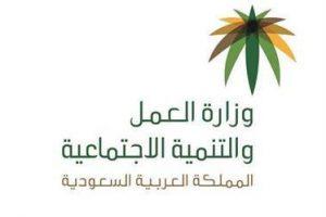 وزارة العمل والتنمية الاجتماعية تمد صلاحية تأشيرات العمل لـ سنتين إلى سنة بدون رسوم إضافية