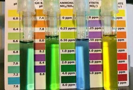 كيمياء المياة المناسب لتربية الاسماك PH- KH – GH – TDS