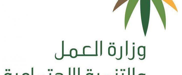 وزارة العمل السعودى: الإستعلام عن معاشات ربيع الأول 1439 برقم السجل