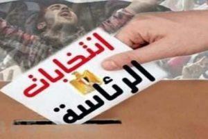انتخابات الرئاسة 2018: اعرف لجنتك الإنتخابية بالرقم القومى من البوابة الإلكترونية