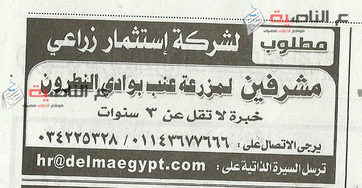 15وظائف جريدة الأهرام 3-4-2016
