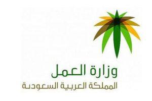 قرار وزاري من السعودية: 12 مهنة يعمل بها السعوديين فقط واستثناء الوافدين منها