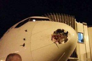 اصطدام طائر يحدث تلفيات بطائرة مصر للطيران فى لندن