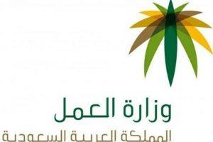 اجراءات حماية أجور العمالة الوافدة فى السعودية عبر بوابة مساند الالكترونية