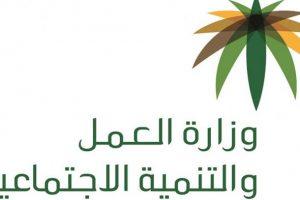 وزارة العمل السعودية : الغاء سعودة 12 مهنة بعد التطبيق الفعلى لقرار سعودة المهن