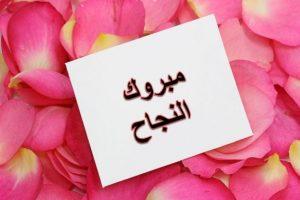 نتيجة الصف الثالث الإعدادى 2017 لطلاب محافظة أسيوط