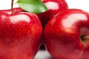 فوائد أكل التفاح على الريق للتمتع بالنشاط والحيوية والحصول على جسم خال من الأمراض