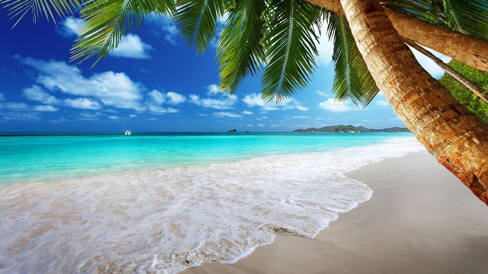 Summer Beach Scene 4k Hd Desktop Wallpaper For 4k Ultra Hd: تنزيل صور تصلح لكل الاستخدامات