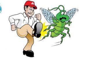 طريقه طبيعيه للتخلص حشرات المنزل النمل والناموس والصراصير وامنه على الصحه