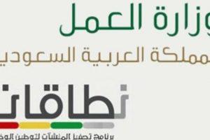 برنامج نطاقات : وزارة العمل والتنمية تطور برنامج نطاقات لزياده فرص العمل للمواطنين