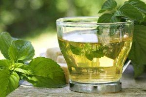 فوائد شرب النعناع على المرأة الحامل |  مشروبات للحامل