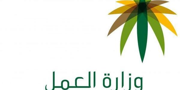 رابط خدمات وزارة العمل السعودية وكيفية الاستعلام عن الوافدين للعمل من مختلف الدول