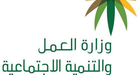 الاستعلام عن اعانة معاق بالسجل المدنى عبر بوابة وزارة العمل الالكترونية