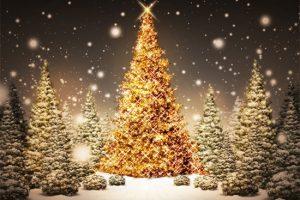 مجموعة متميزة جدا من شجرة عيد الميلاد أشكال مختلفة لتزيين شجرة الكريسماس