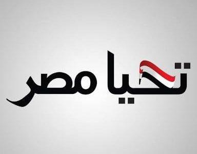 تعرف على عدد الرسائل المستلمة لصندوق تحيا مصر