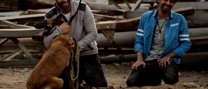 مشاهدة اعلان فيلم كلب بلدى 2016 بطولة احمد فهمي وبيومي فؤاد