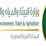 خطوات الاستعلام عن فاتورة المياه الشهرية برقم الحساب رابط حساب معدلات الاستهلاك